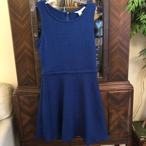 Max Studio Royal Blue Swing Skirt Dress